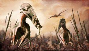 Reconstrucción de Hatzegopteryx. Imagen © Mark Witton